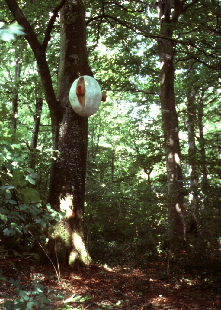 Stephen Rowley, Minutiae, 1999 Beech, Le Vent de Forets, Layhaymiex, France